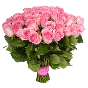 Розы Эквадор розовые